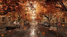 осень, автошкола, выходной день